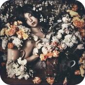 Teppich Mineheart Rose Garden
